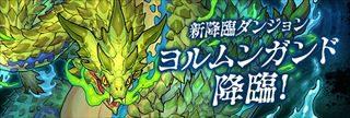 【パズドラ】ヨルムンガンド降臨(超地獄級)攻略 安定周回ノーコンパーティ(ソロ・マルチ)