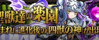 【パズドラ】「聖獣達の楽園」攻略 安定周回ノーコンパーティ(ソロ・マルチ)