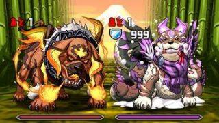 【パズドラ】「火と影の犬龍」Sランク攻略パーティまとめ