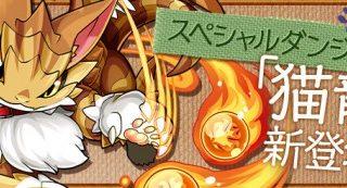 【パズドラ】猫龍シリーズスキル上げ一覧