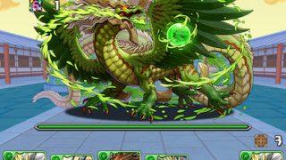 【パズドラ】「木の宝珠龍」Sランク攻略パーティ