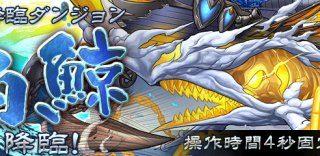 【パズドラ】白鯨降臨(超地獄級)攻略 安定周回ノーコンパーティ(ソロ・マルチ)